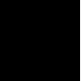 Esempio di Ex Libris con iniziali